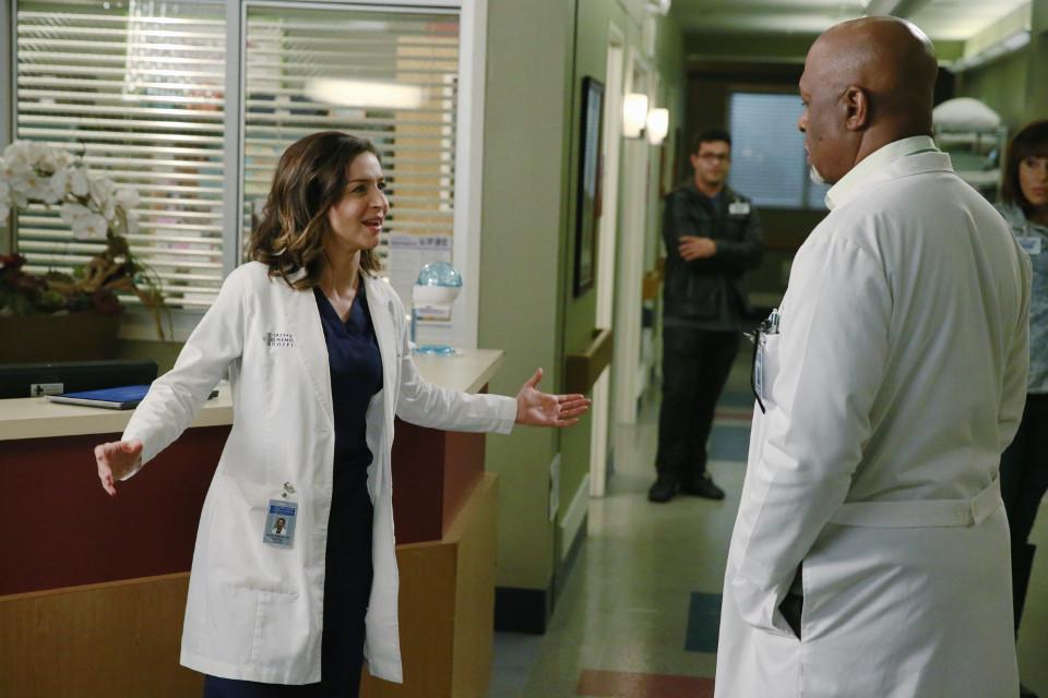 Greys Anatomy Season 11 Episode 22 Full Episode Fluffy Breaks Even