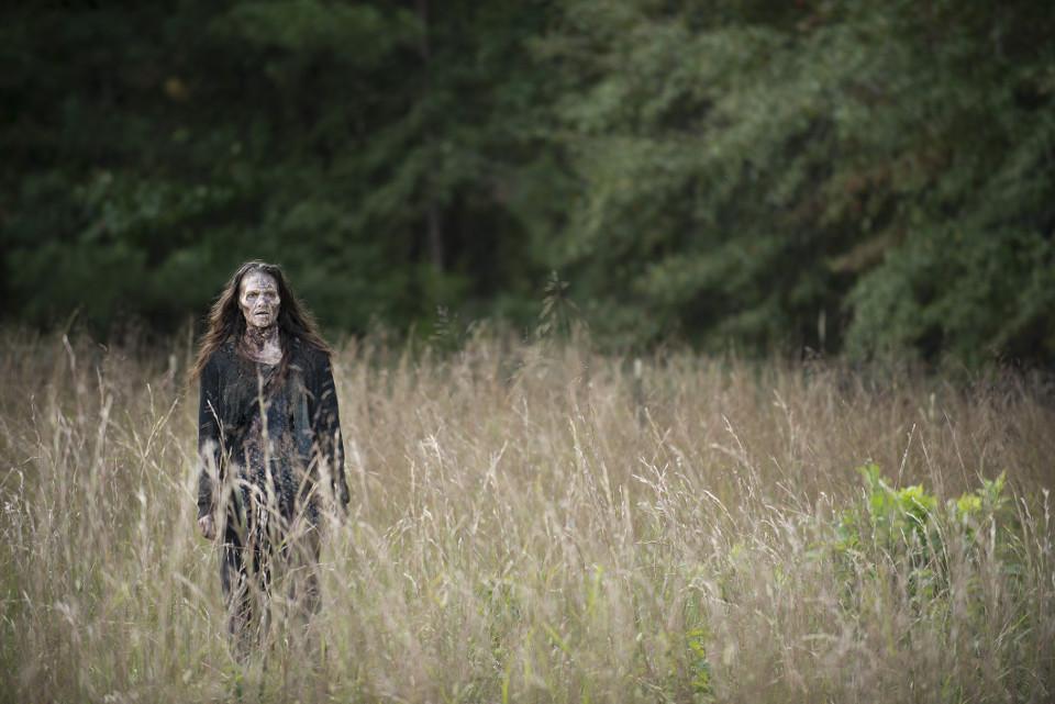 Walker - The Walking Dead _ Season 5, Episode 13 - Photo Credit: Gene Page/AMC