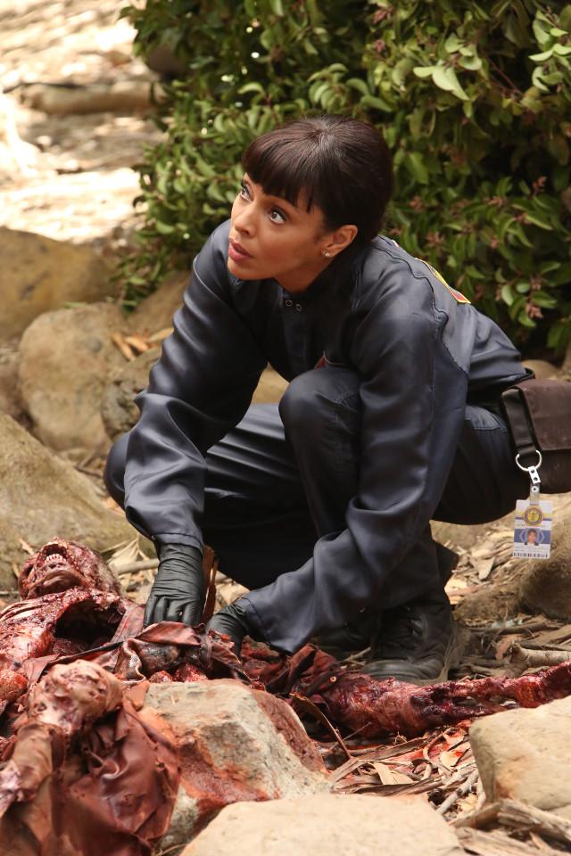 Bones Season 12 Episode 2 The Brain in the Bot  ©2016 Fox Broadcasting Co.