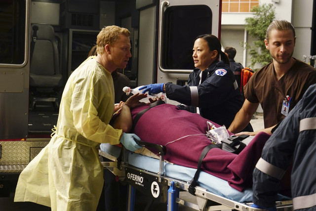 Grey's Anatomy - Series 15