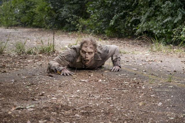 - The Walking Dead _ Season 8, Episode 11 - Photo Credit: Gene Page/AMC