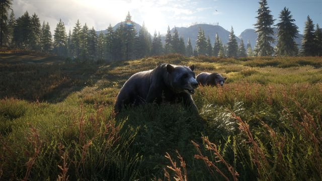 theHunter: Call of the WildtheHunter: Call of the Wild