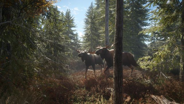 theHunter - Call of the Wild 2019 Edition (11)