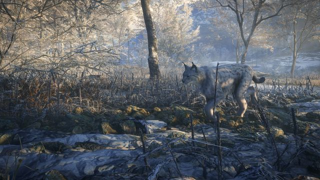 theHunter - Call of the Wild 2019 Edition (4)