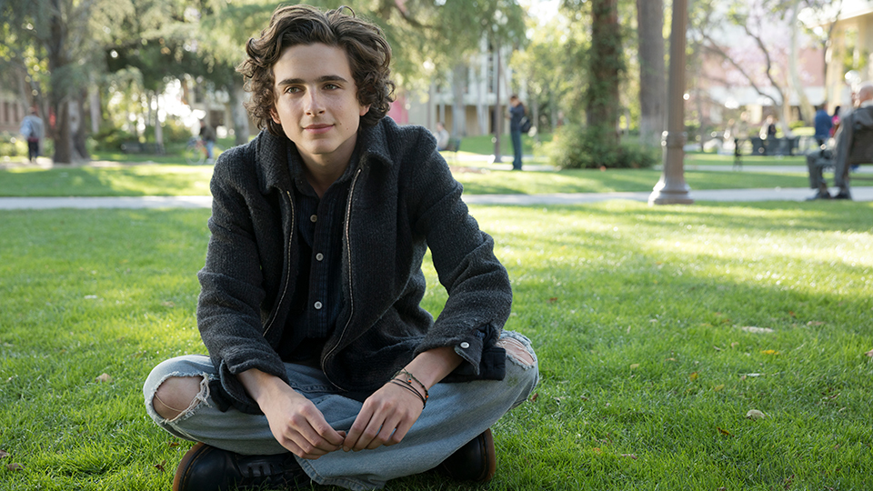 Beautiful Boy - Timothee Chalamet