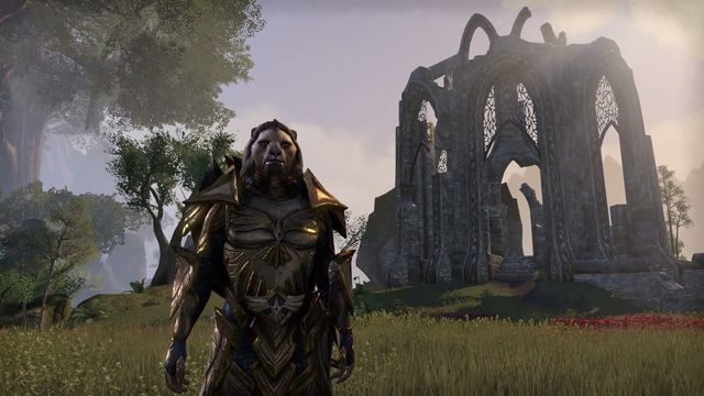 Elder Scrolls Online Build Ideas