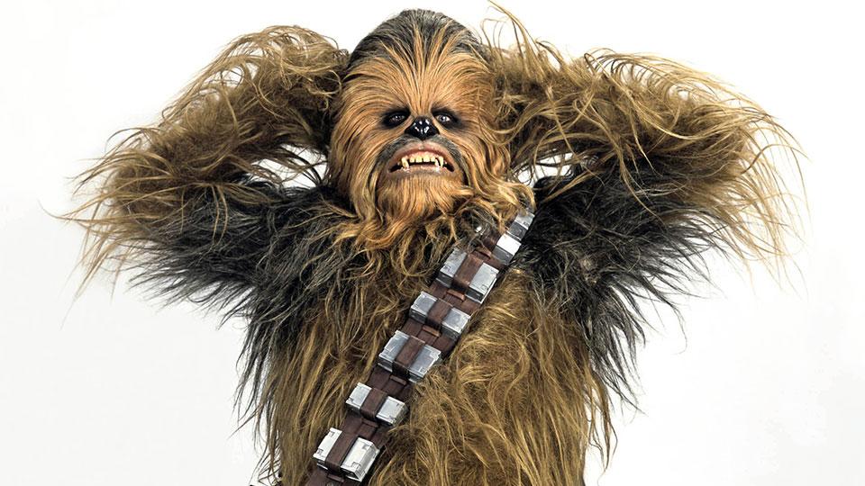 Chewbacca - Peter Mayhew