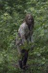 The Walking Dead - 10x08