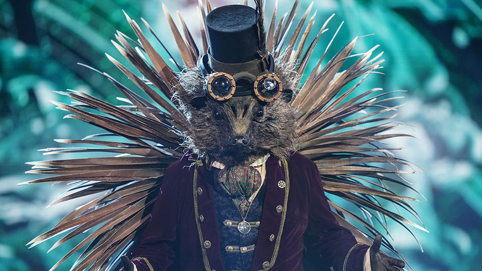 The Masked Singer - Hedgehog