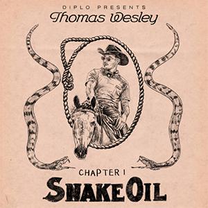 Diplo Snake Oil