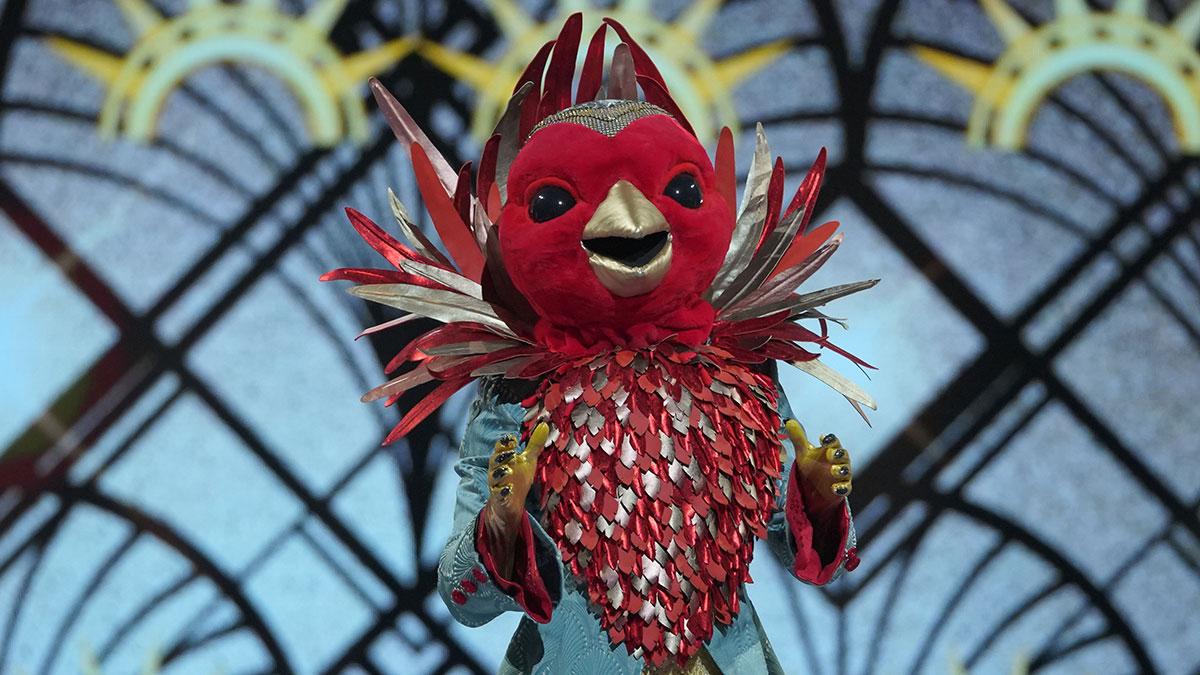 The Masked Singer UK - Robin